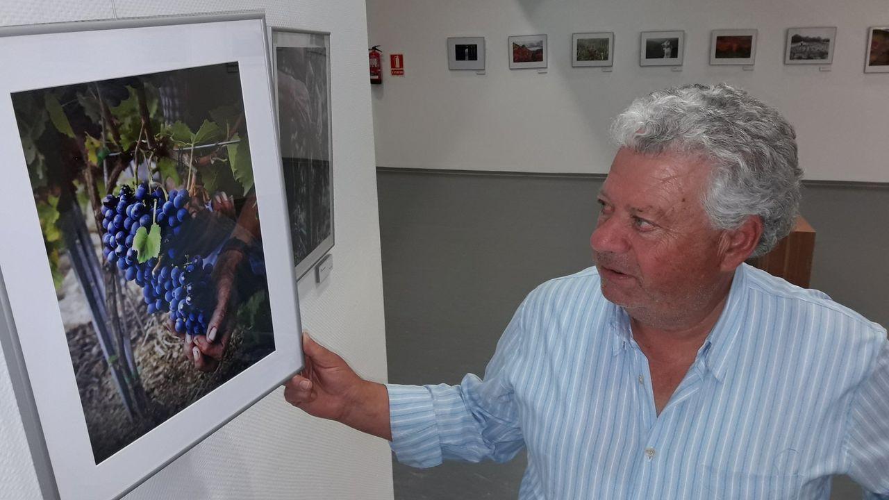 Una visita en imágenes al Carreiro do Castro de Seceda.Una de las imágenes que forman parte de la exposición «Viña Sacra»