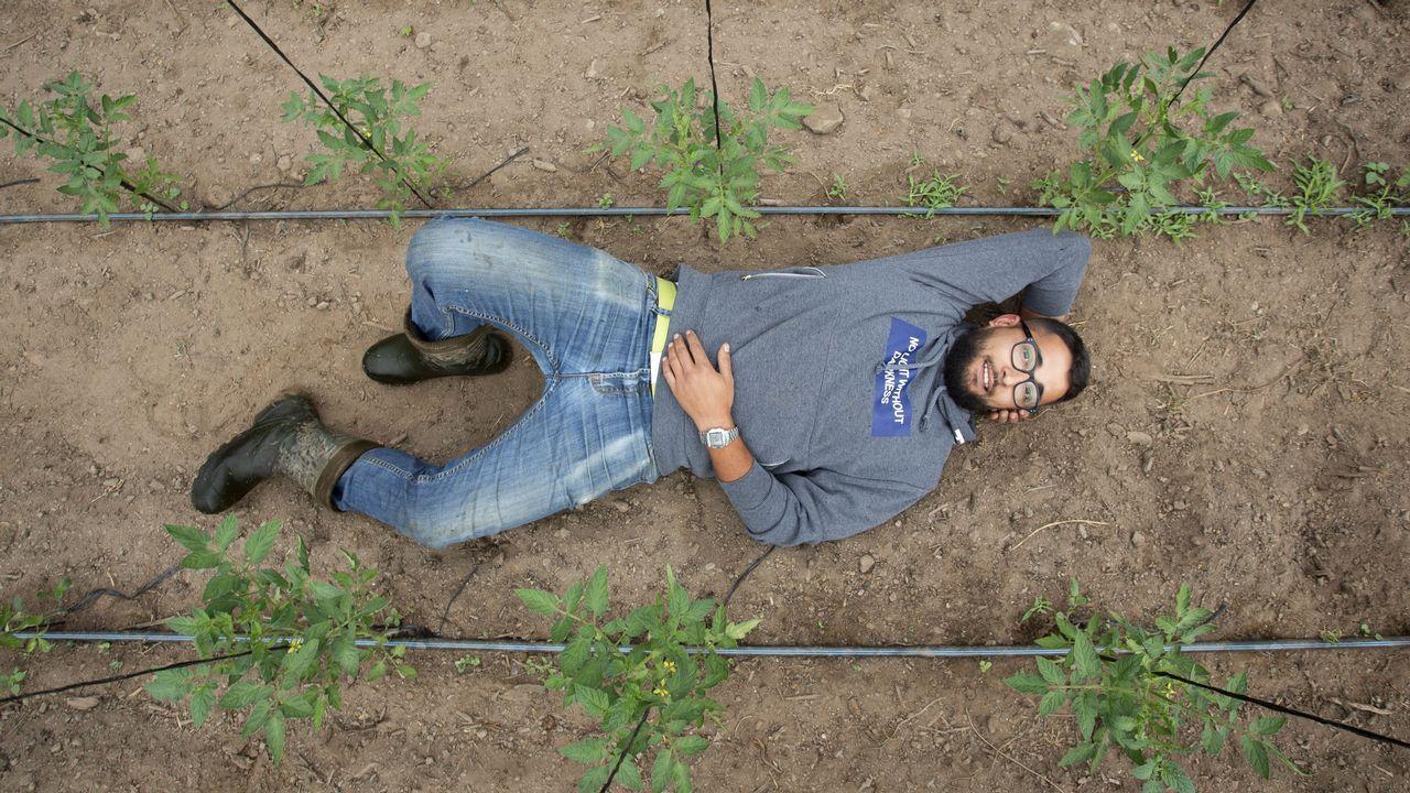 Ramón Carral en el invernadero en el que crecen las plantas de sandía