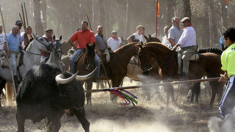 Último adiós al torero Víctor Barrio.José Ignacio Ceniceros. La Rioja. El presidente del Gobierno de La Rioja se impuso 109 votos a Gamarra, alcaldesa de Logroño.