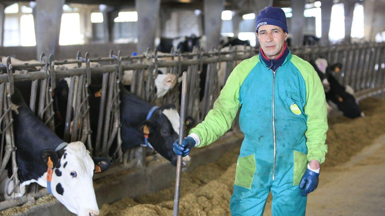 Hassane estuvo ocho años en Lugo sin papeles.Ahora está contratado en una de las granjas más grandes del concello y ha regularizado su situación