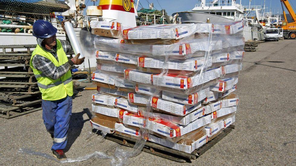 Las descargas de pulpo de la flota cefalopodera en Marín se remontan a agosto del 2012.