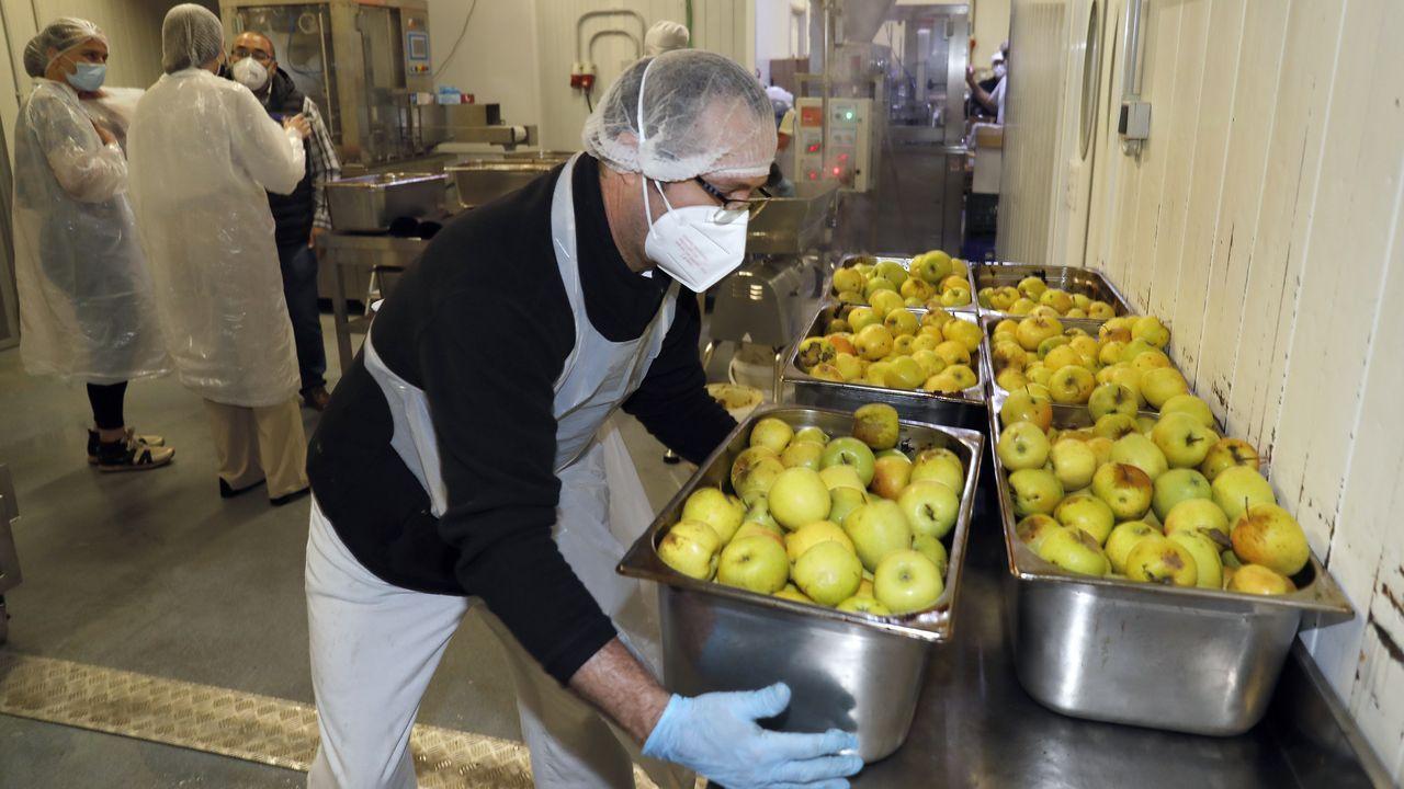 Óscar Costas recoge cajas de manzanas con las que se elaborarán compotas naturales