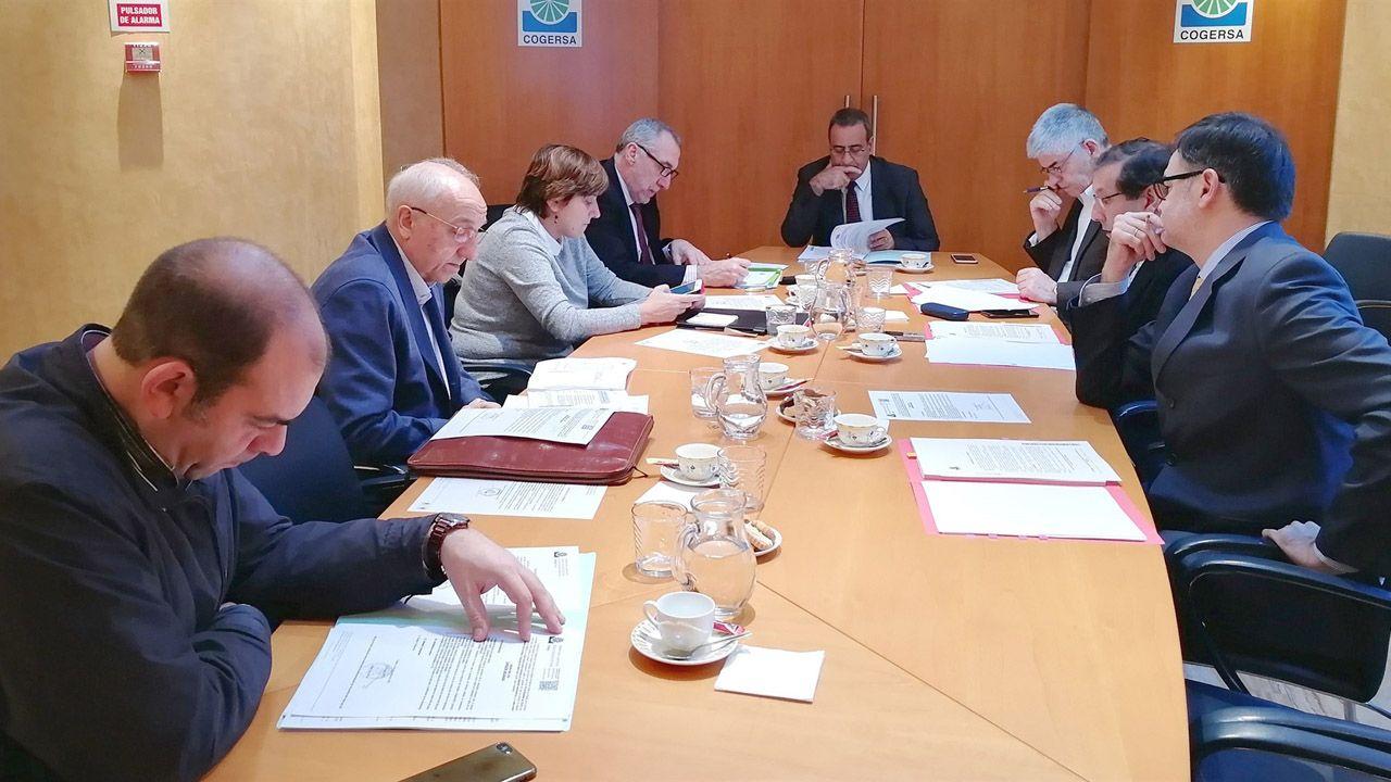 La comisión delegada de Cogersa en la reunión