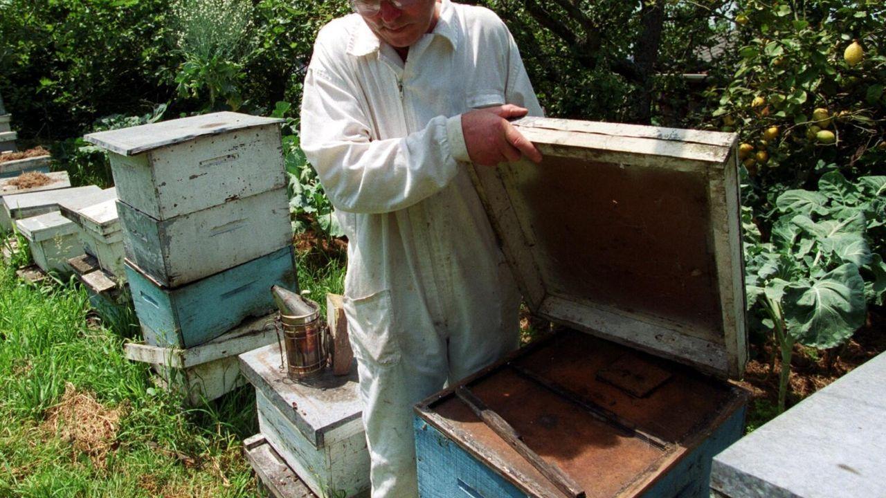 La alvariza de Barxas yla miel ecológica de Manuel Macía.La Diputación quiere contribuir al cuidado y al mantenimiento de zonas rurales