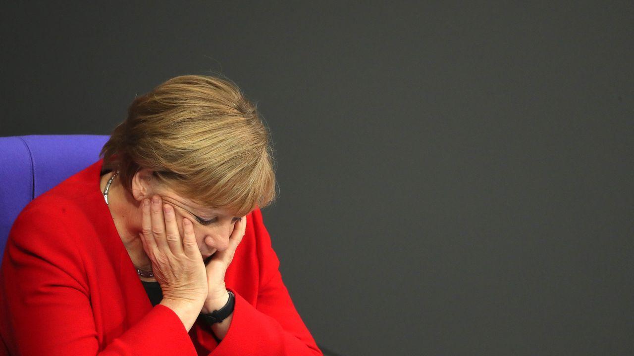 Las imágenes del zoo.Merkel defiende la gestión de la coalición de gobierno  y mantiene su compromiso de llevar la legislatura a buen término