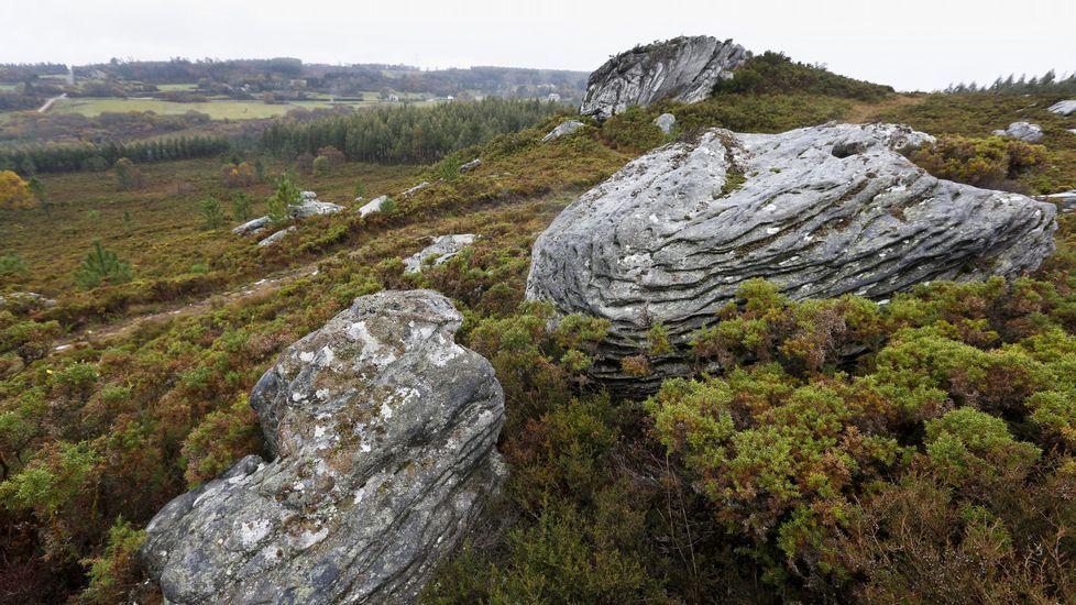 Se subasta yacimiento arqueológico por 7.700 euros