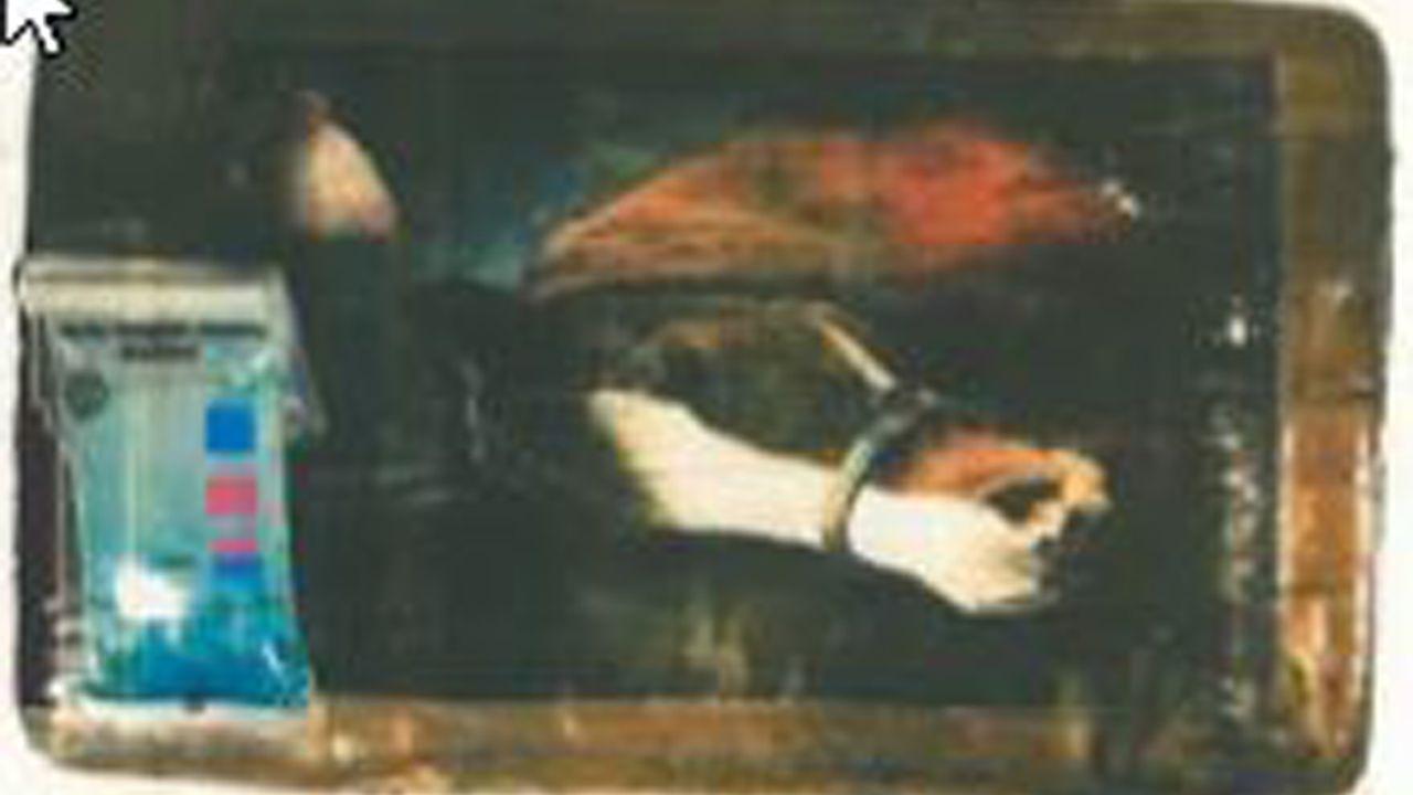 El caballo es otro de los animales usados para marcar los fardos