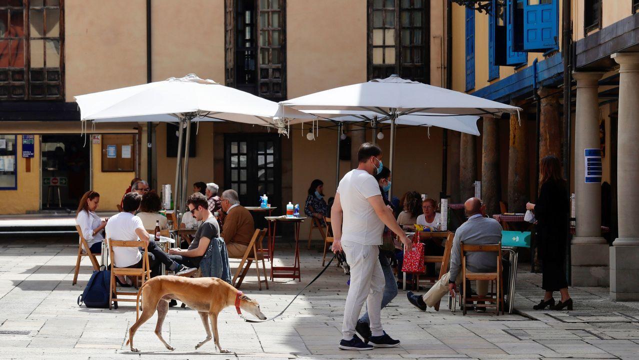 Aspecto que presentaba este jueves el mercado de El Fontán de Oviedo.