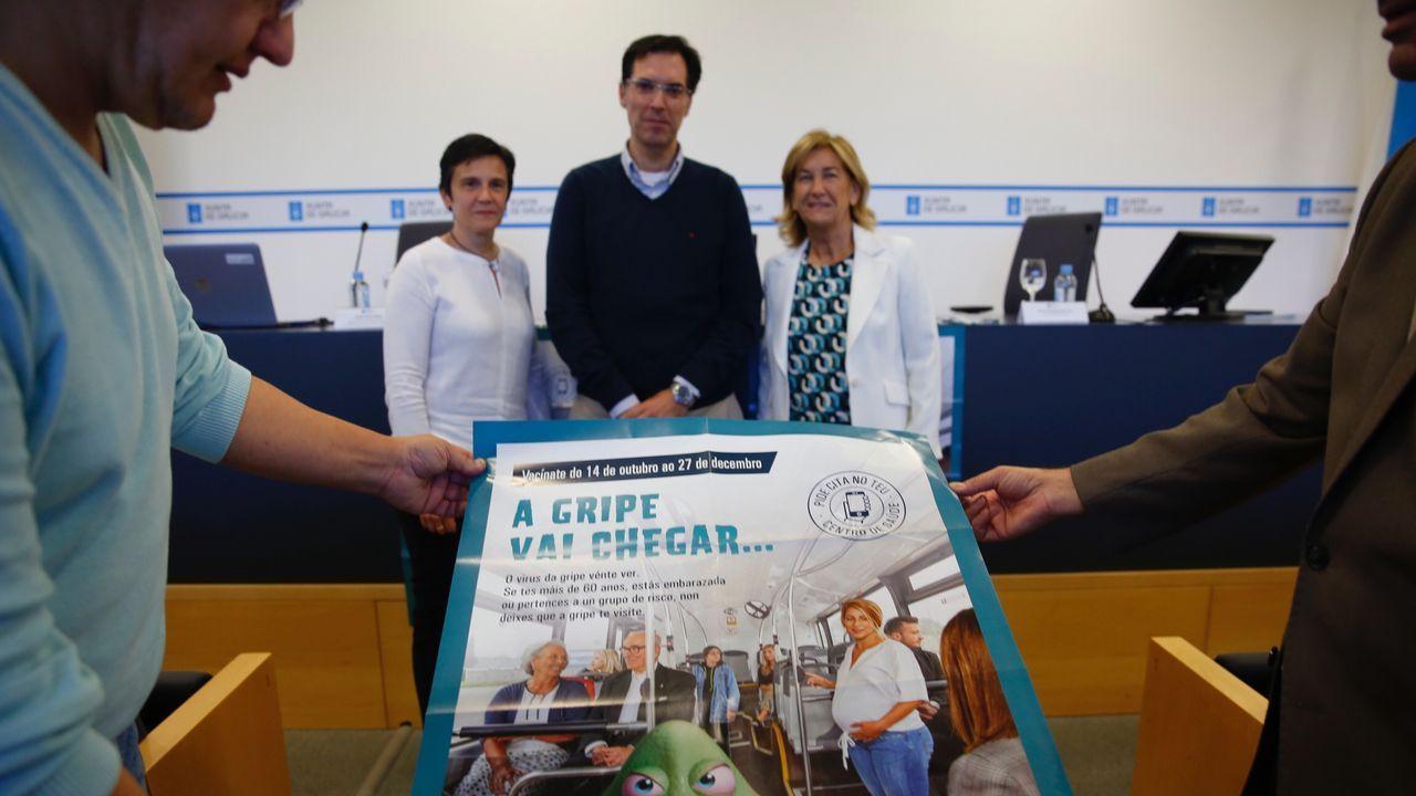 gripe.Vista del Hospital Universitario Central de Asturias (HUCA)