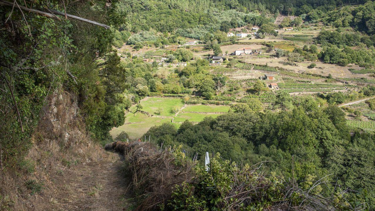 Un tramo del camino con la aldea de Souto al fondo