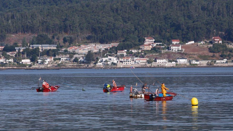 La Guardia Civil evitó un altercado entre percebeiros y bateeiros en A Barca de Muxía.Imagen de archivo de barcos atracados en el puerto de Cedeira, base del pesquero que se hundió y del que lo rescató, y adonde han sido trasladados los dos náufragos