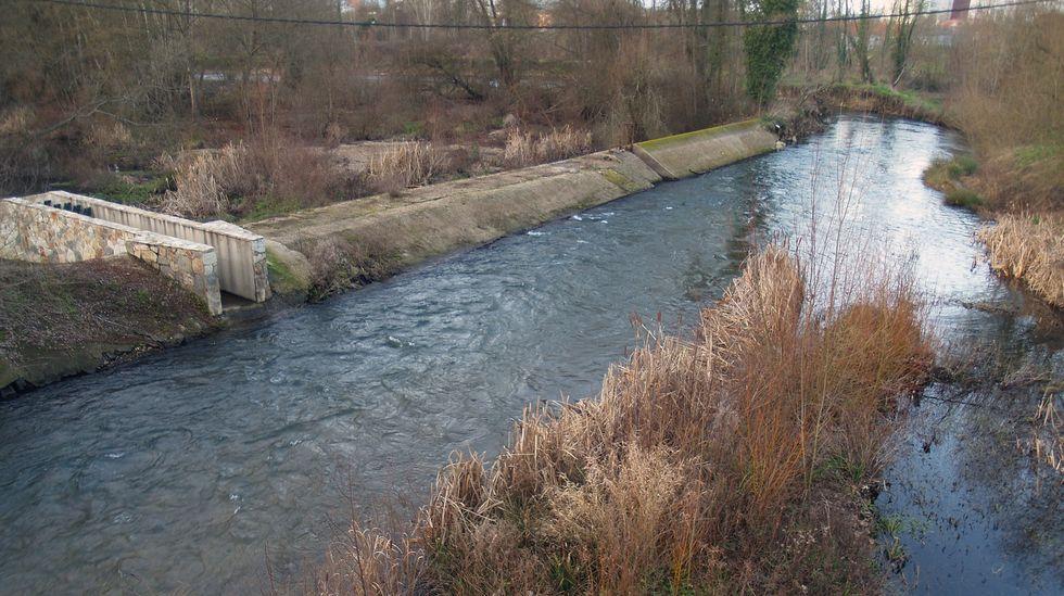 Una escollera evitará que avance la erosión en la margen más próxima al lugar en el que rompió la presa