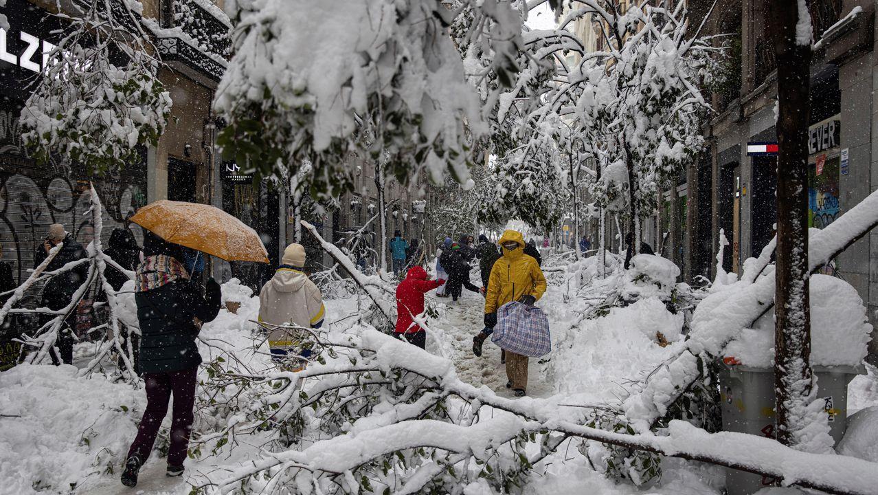 La calle Fuencarral, cubierta de ramas de árboles