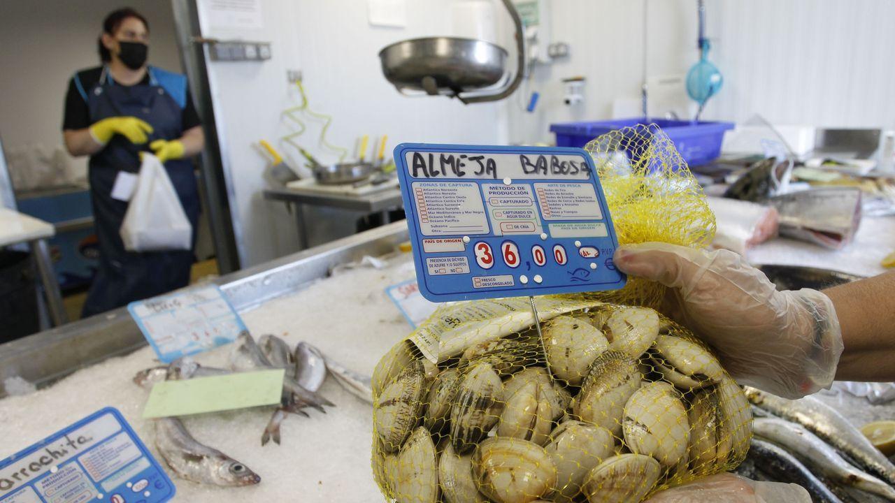 En la pescadería A túa lonxa del puerto de Ferrol se despachaba este martes la almeja babosa de la ría a 36 euros el kilo