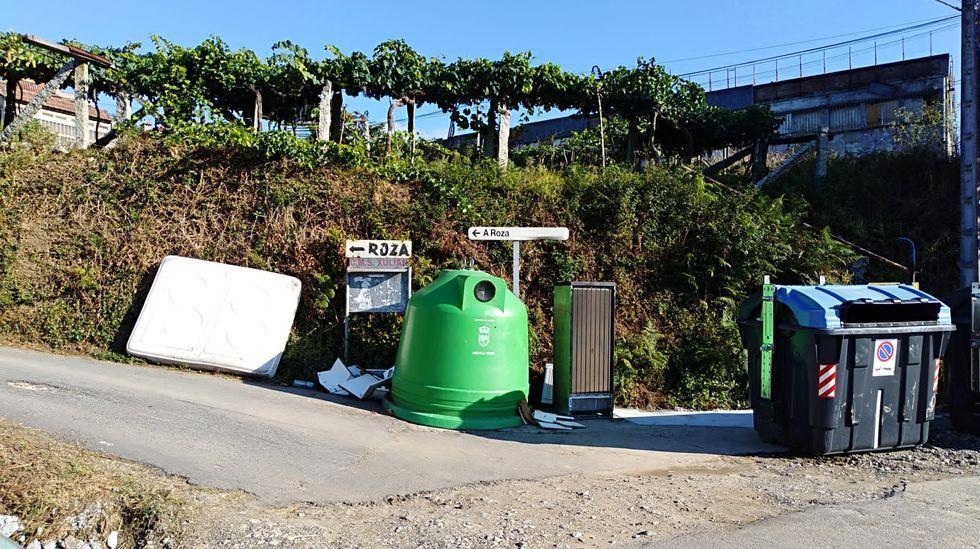 Visita a la explotación de porco celta en Osmo (Cenlle), aldea modelo de la Xunta