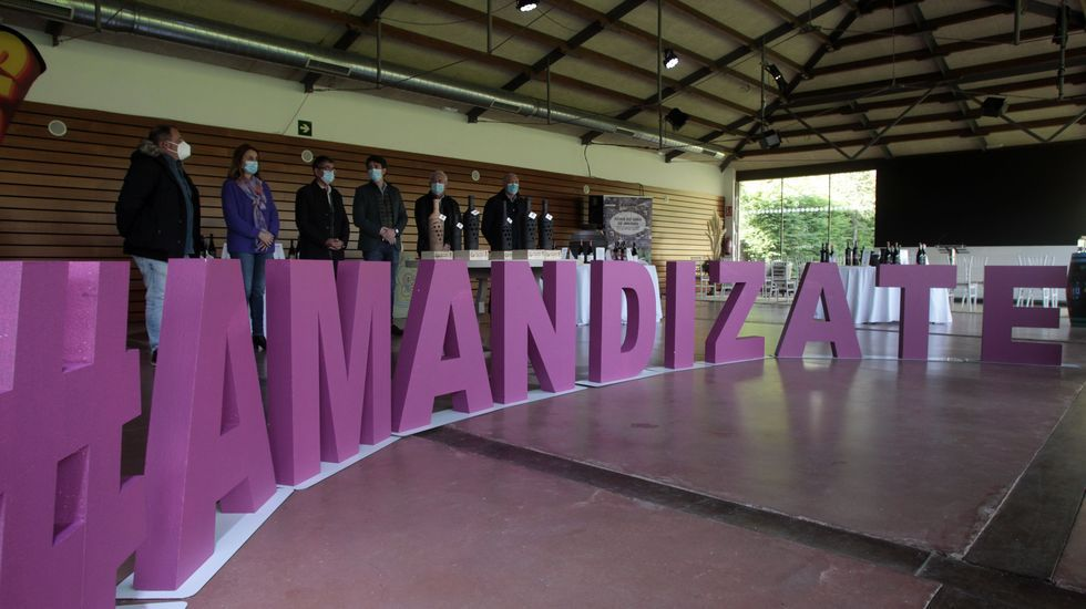 Un momento de la inauguración oficial de la 40 Feira do Viño de Amandi, con el lema  amandízate  en primer plano