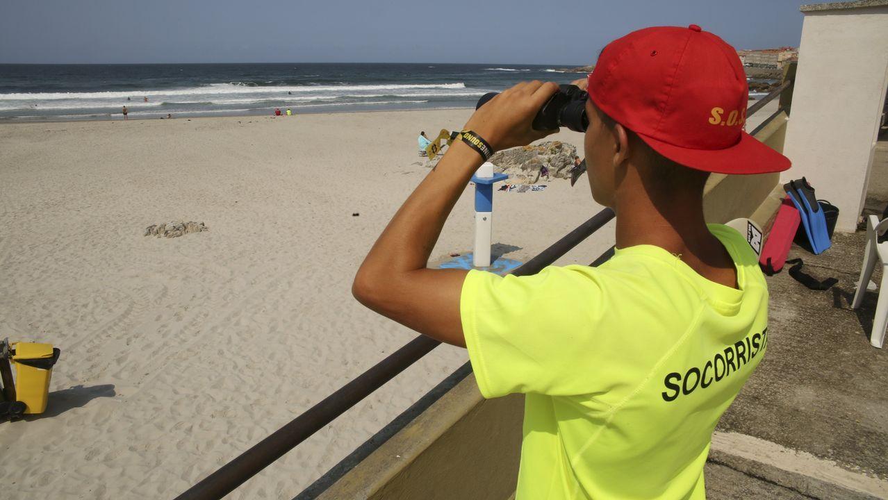 Un domingo de entrega al medio ambiente en Baio y Carballo: imágenes