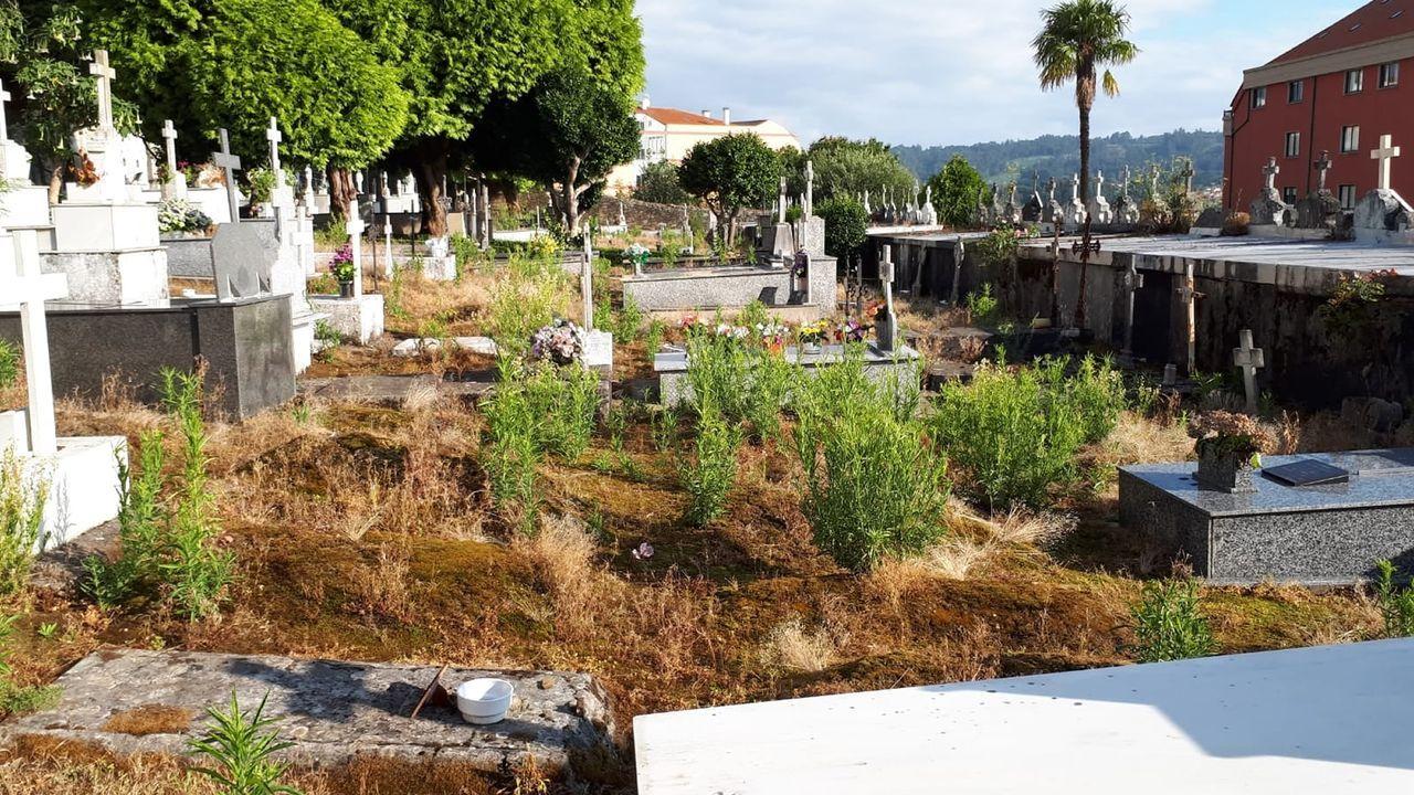 Colas para los test grachíoos de covid en la plaza de España de Ferrol