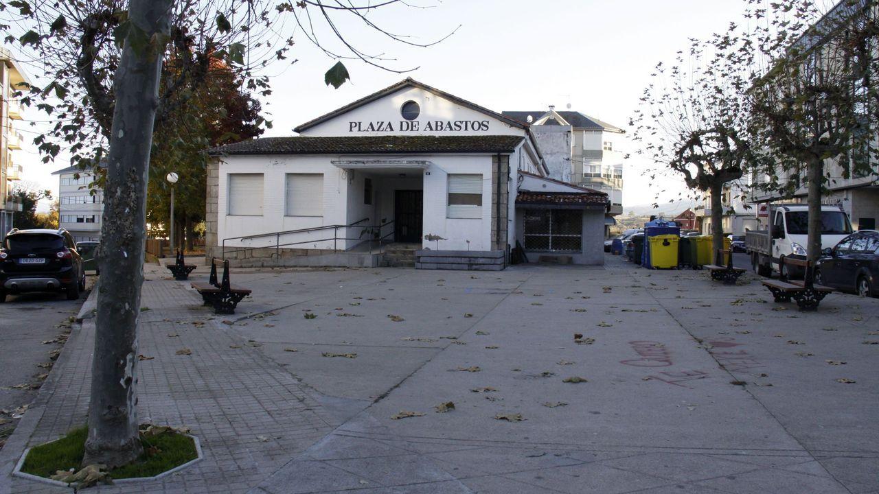 La cosecha de la uva en O Salnés.Vendimia en la ribera de As Forcadas,  el día del arranque oficial de la campaña