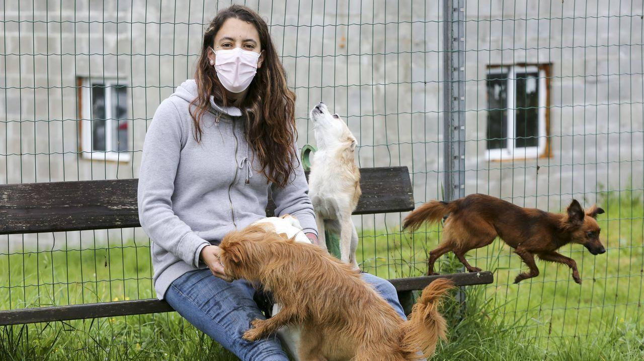 Homenaje a Adrián Verdes en Malpica por sus 25 años en Protección Civil: las imágenes.Yadira Tenreiro, en una imagen tomada en Castro, rodeada de cuatro de sus seis «perrhijos»