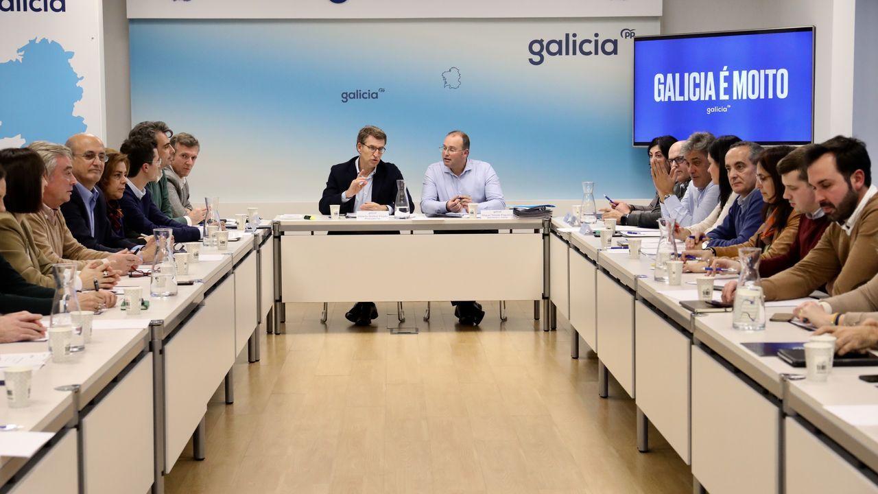 Imagen del comité de dirección del PPdeG celebrado este lunes