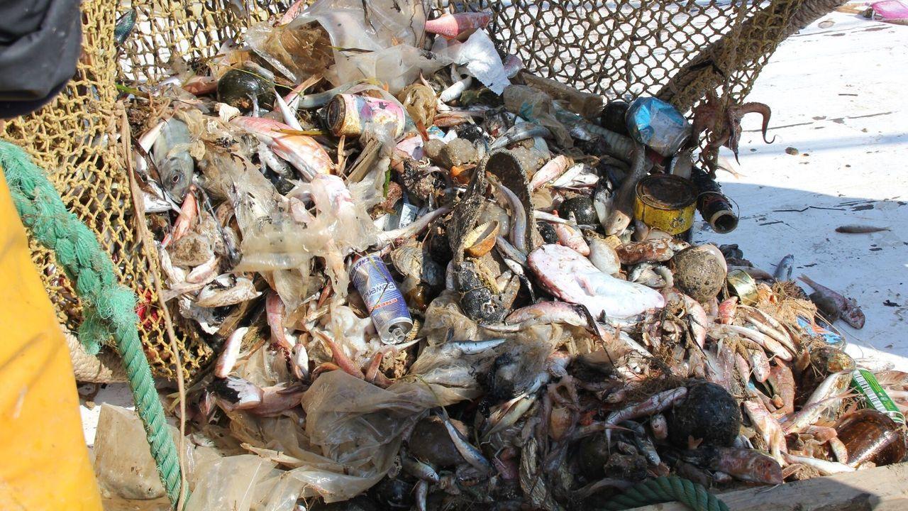 Basura redes pesca.Equipo investigador que participó en el descubrimiento