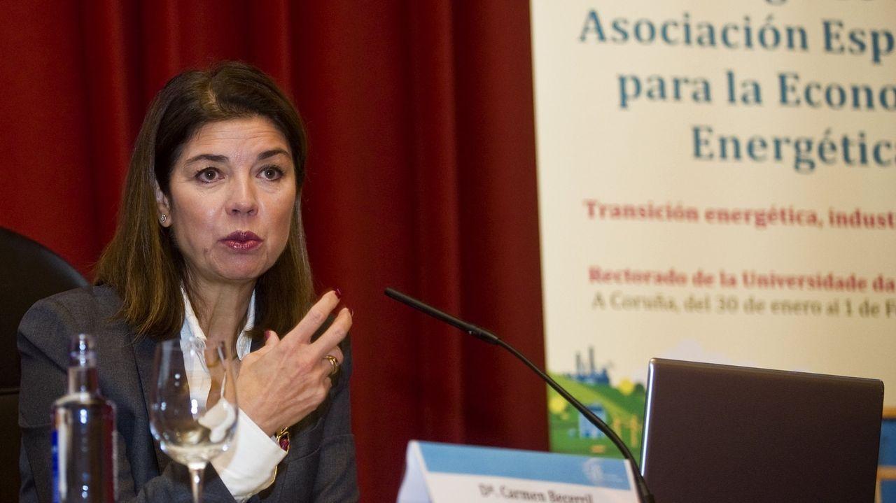 Carmen Becerril, presidenta del operador del mercado eléctrico