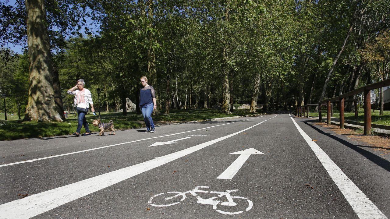 Voluntarios limpian 25 espacios naturales en Galicia