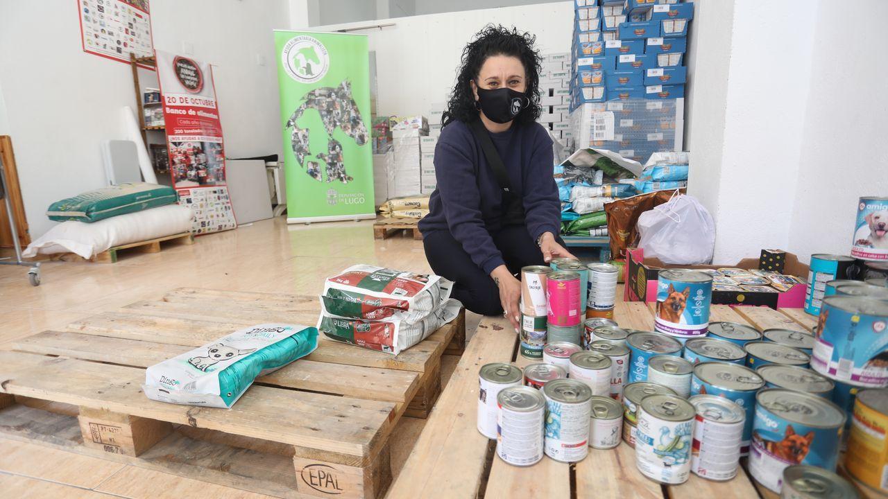 Noelia Rocha, presidenta de Ayuda Alimentaria Animalista, en el bajo que sirve como almacén de la asociación