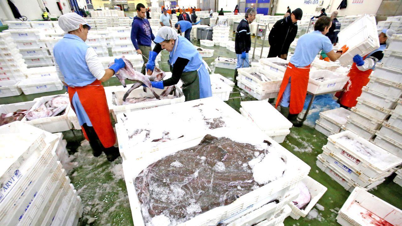 Imagen de archivo de la lonja de Vigo, líder en Galicia por facturación durante el 2020, con 97 millones de euros, y segunda por volumen de ventas, con 30 millones de kilos