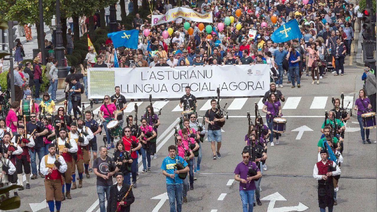 Vista de la manifestación convocada hoy en Oviedo por la Xunta pola Defensa de la Llingua Asturiana para reivindicar la oficialidad del asturiano en el Principado