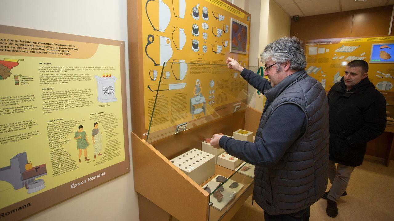 El <span lang= gl >Museo de Prehistoria e Arqueoloxía de Vilalba</span>, en imágenes.Un conjunto escultórico que representa en tamaño natural un mamut adulto y una cría es uno de los puntos destacados de la nueva ruta de senderismo