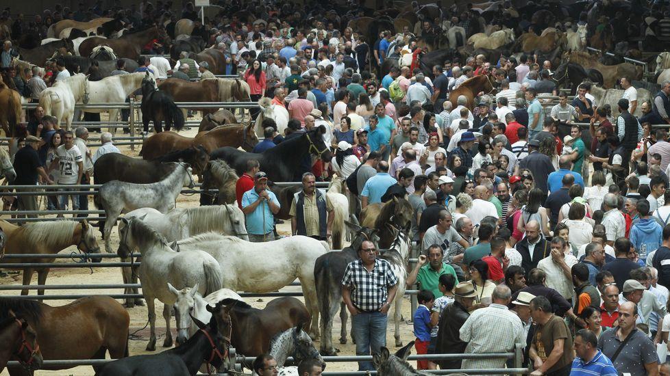 Santiago revive la tradicional Feira Cabalar de Amio