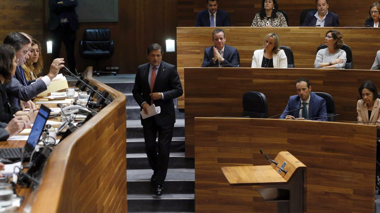 Un ejemplar de lobo.El presidente del Principado, Javier Fernández, se dirige al estrado del hemiciclo de la Junta General