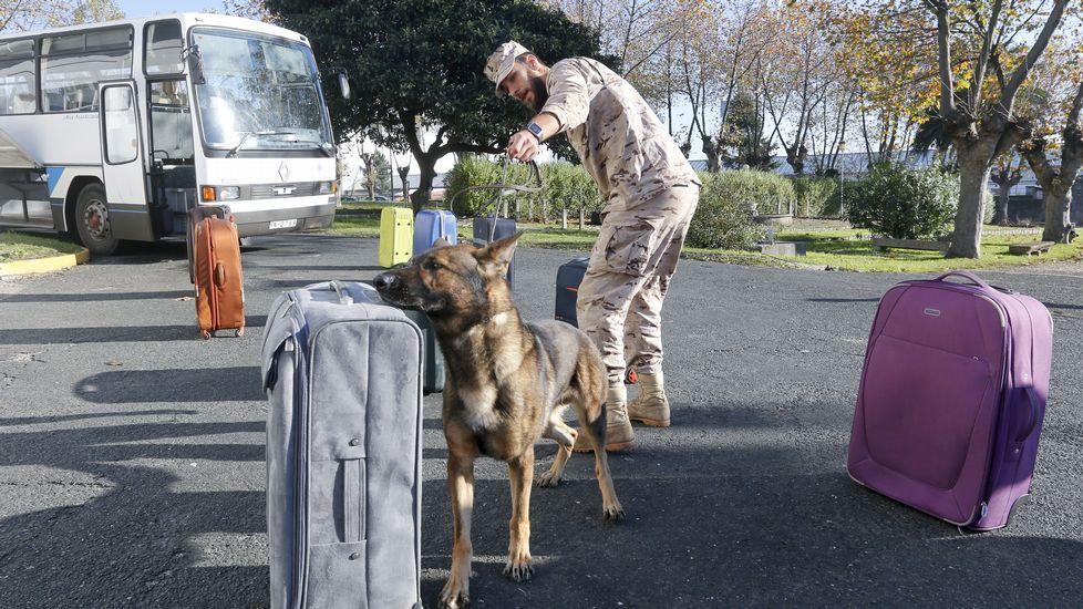 Inspección de maletas y paquetería