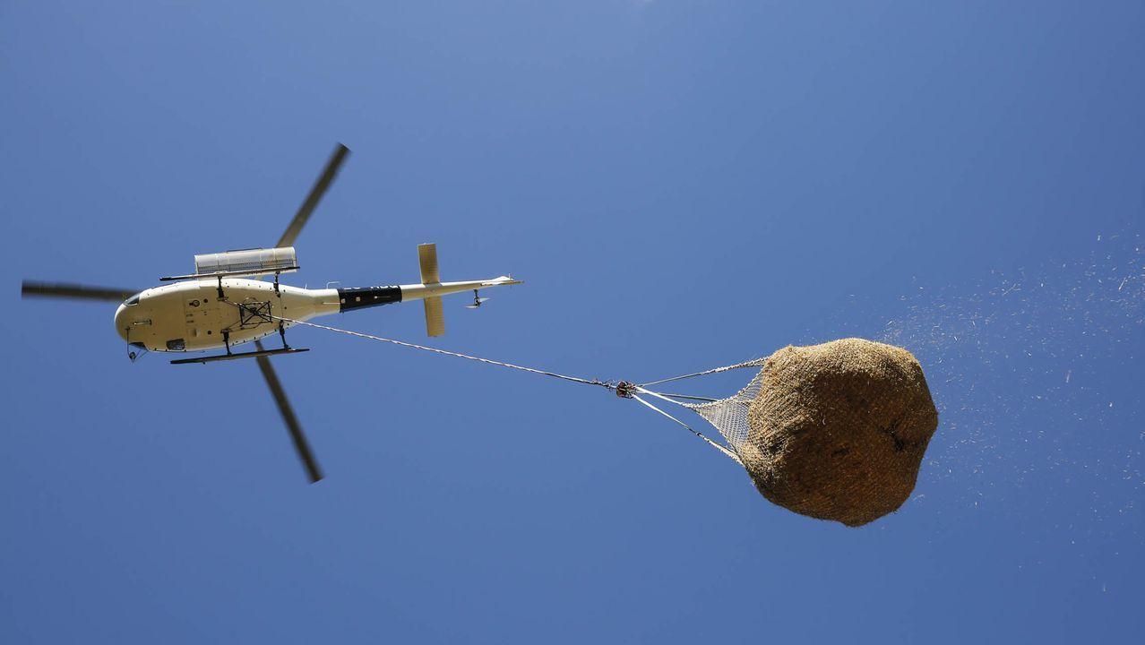 Helicóptero soltando paja en el Xurés, donde hubo los incendios forestales este pasado verano