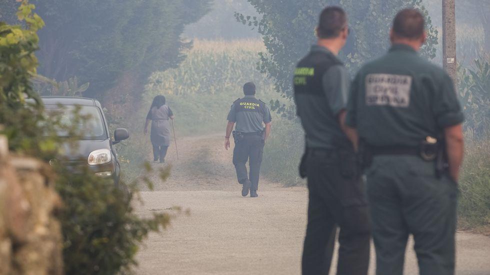 Maleza en las calles de Ourense.A Volta do Agro