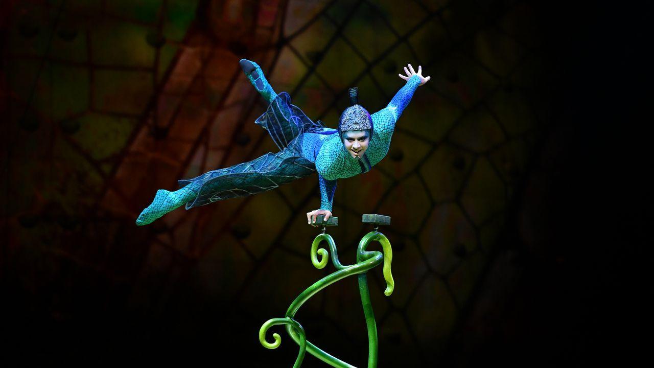 Imágenes de los espectáculos «Totem», «Ovo» y «Toruk: el último vuelo», del Cirque du Soleil