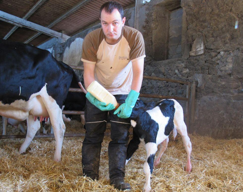 Los ganaderos afirman que los costes de producción son más elevados de lo que dice el ministerio.