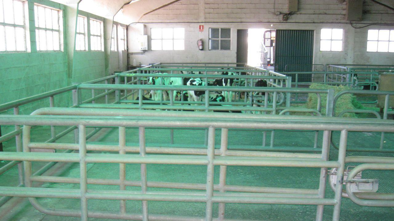 La planta de Inleit, en Curtis, es una de las que obtuvo apoyo de Bruselas durante el año pasado