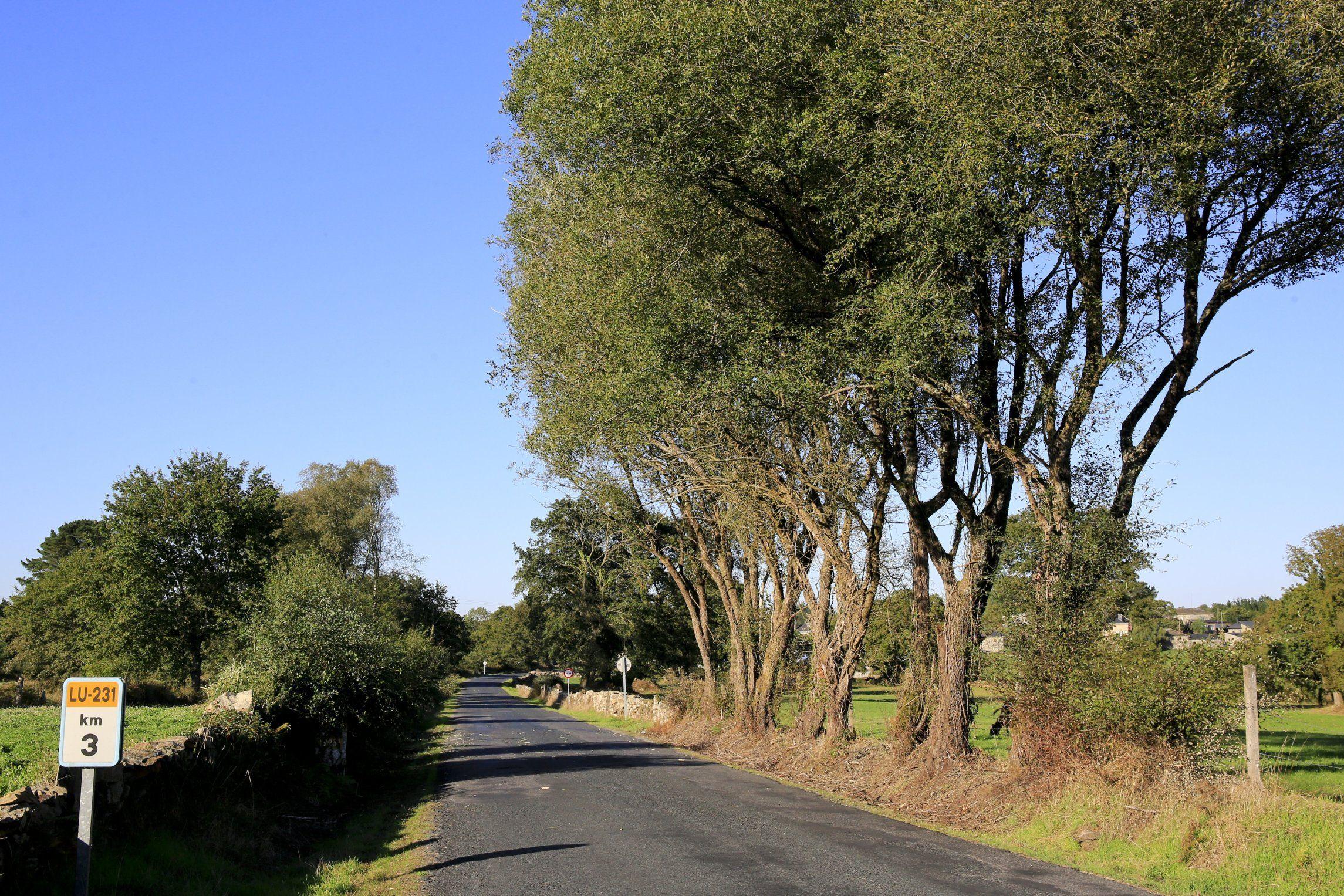 Las obras del enlace de Remonde, que conectará la A-54 con la N-547.Imagen de la carretera en el tramo del municipio de Friol