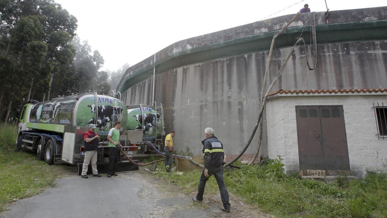 Azor recuperado en Oleiros.PUERTO EXTERIOR DE PUNTA LANGOSTEIRA