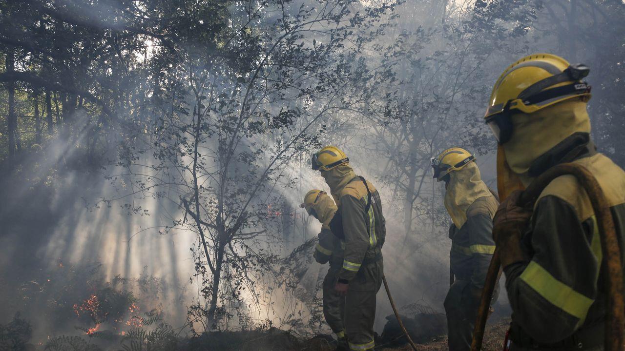 Bomberos trabajan en un incendio en un hotel de Marbella