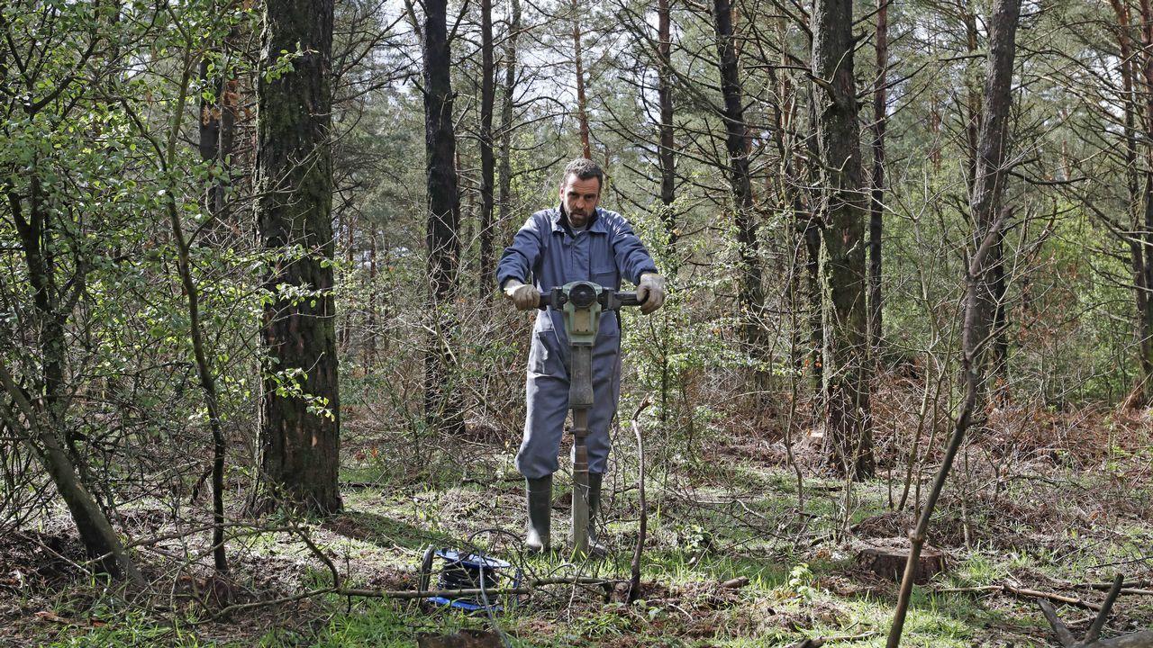 El investigador del departamento de Producción Vexetal de la USC haciendo una cata en el monte Carballo, en Friol.