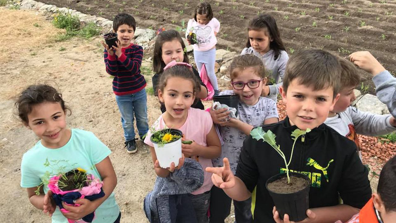 Presentación del plan estratégico de agricultura ecológica