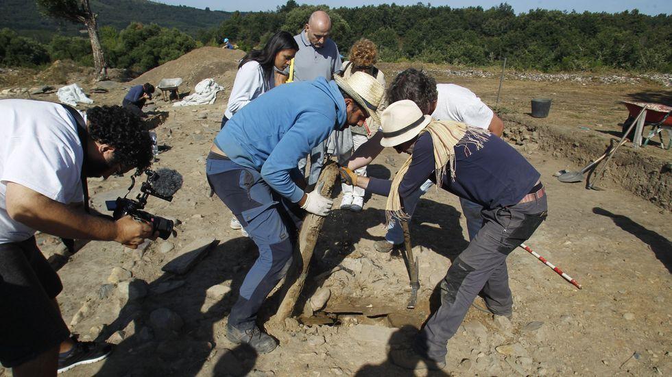 Los arqueólogos destapan la tumba número 53 y por el hueco se ve una calavera en buen estado de conservación