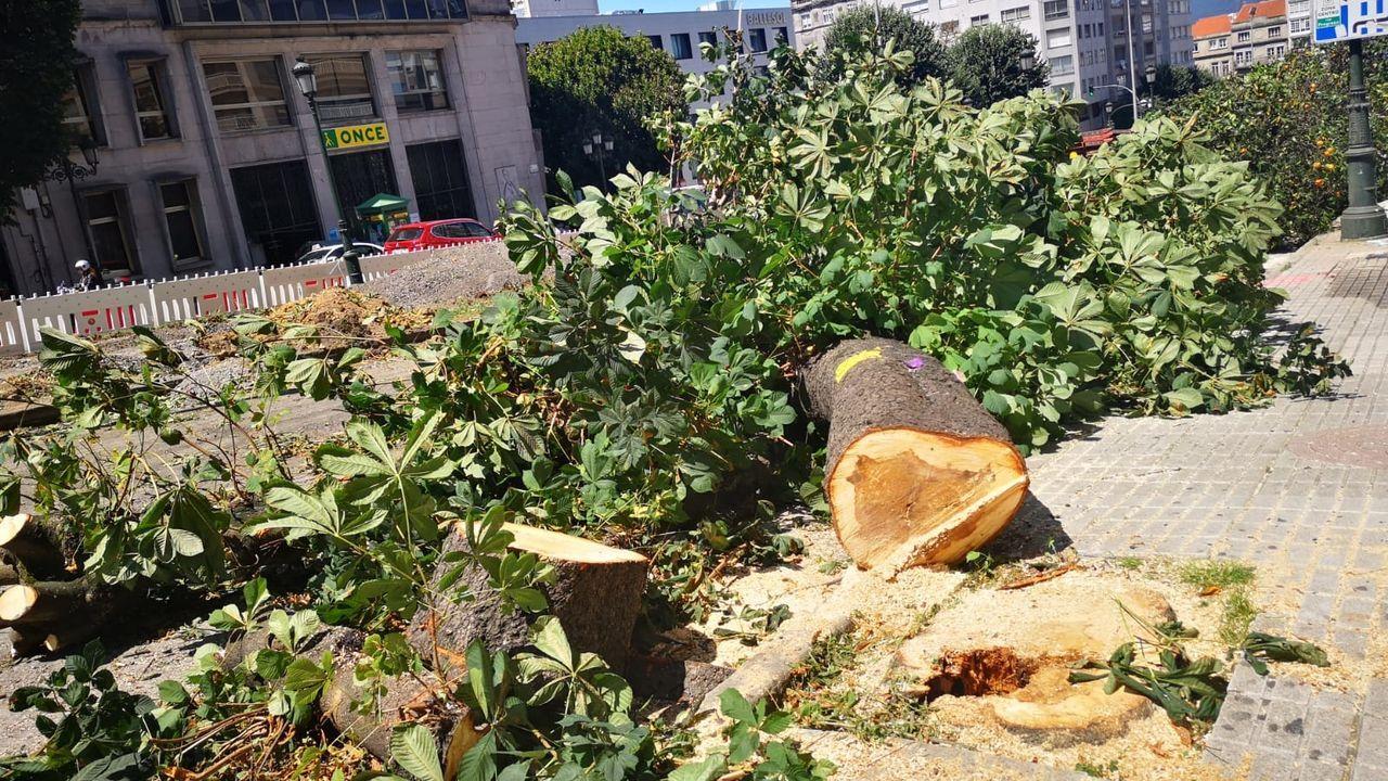 La gran tala de la Gran Vía de Vigo.Centro de El Corte Inglés en Blimea