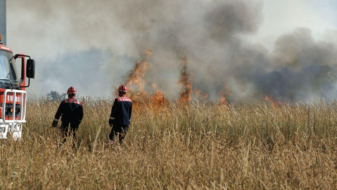 La lucha contra el fuego.Un operario hace labores de limpieza en un monte pontevedrés