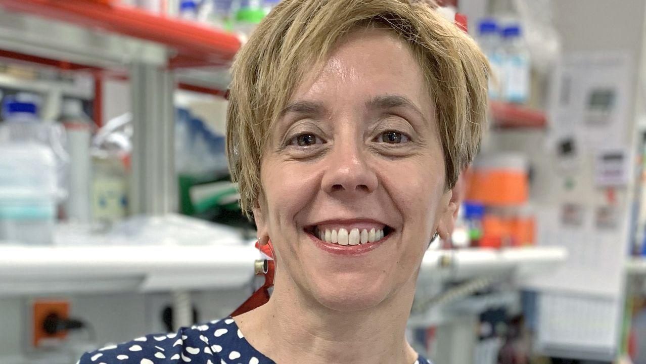 Marisol Soengas, directora del grupo de melanomas del CNIO