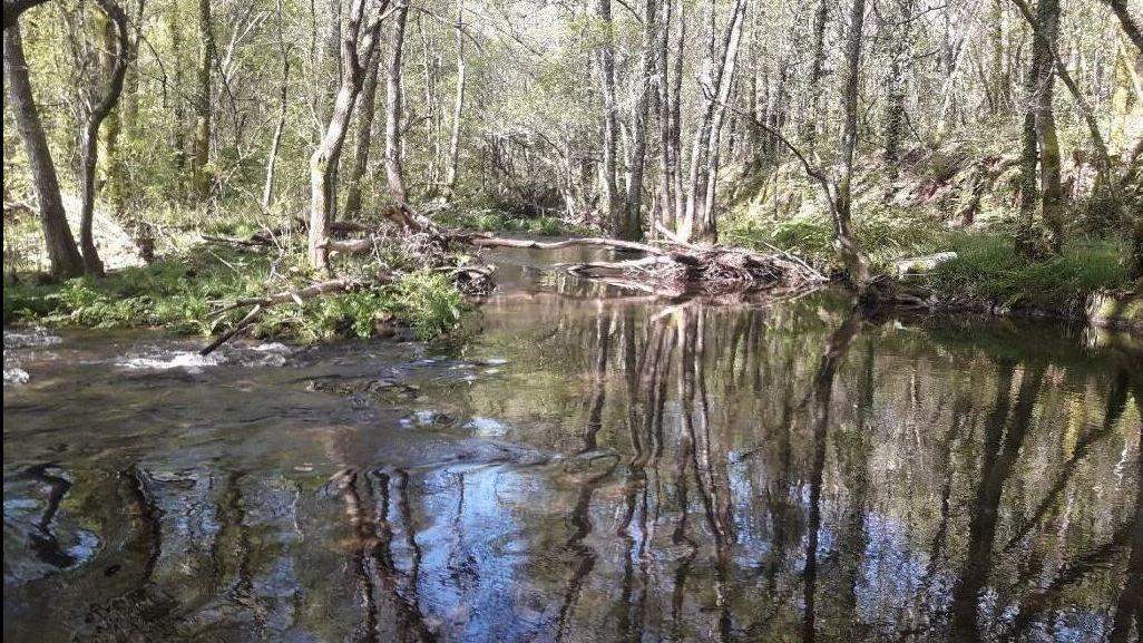 Río Deva, en Pontedeva